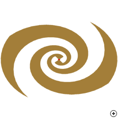 Image of the Printed Equiangular Spiral